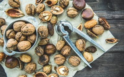Food for Productivity: 20 Foods To Boost Your Concentration