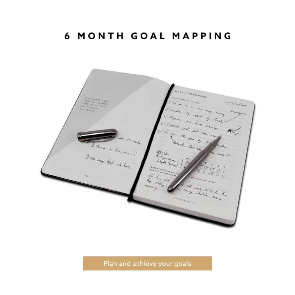 6 Month Goal Mapping.